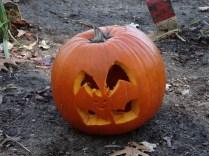 Chris' pumpkin!