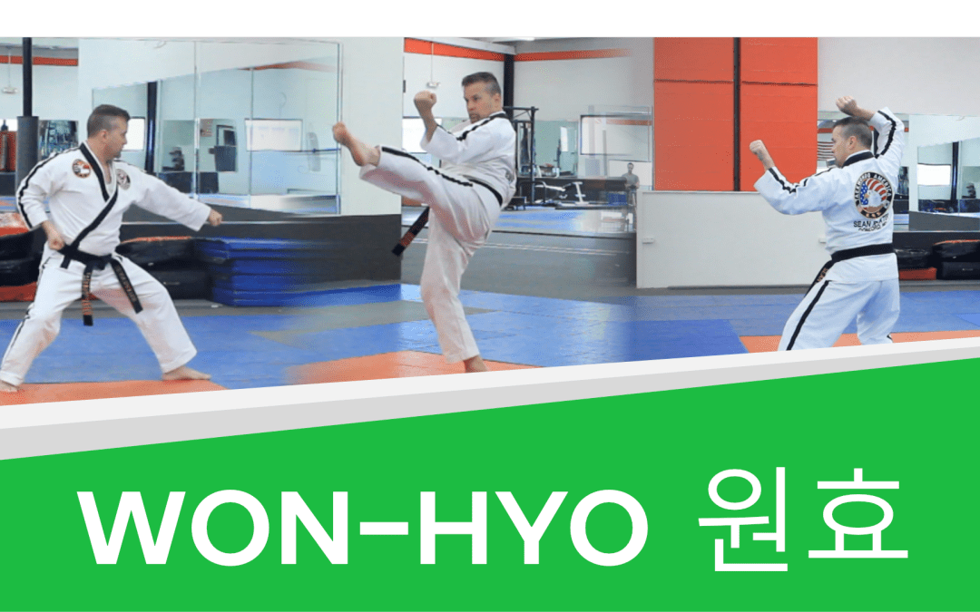 How to: Won-Hyo – Taekwondo Green Belt Form (with Video!)