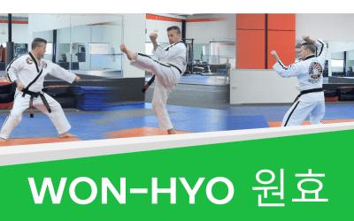 How to: Won-Hyo – Taekwondo Green Belt (with Video!)