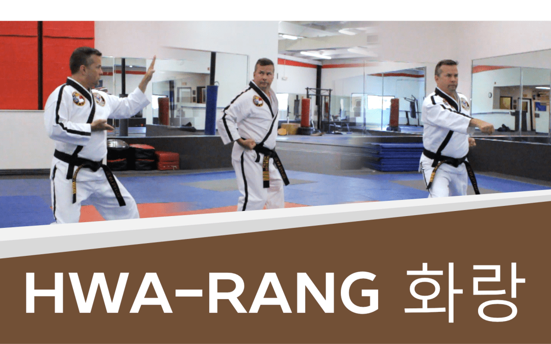 How to: Hwa-Rang – Taekwondo Brown Belt Form (with Video!)