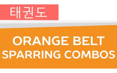 How To: Taekwondo America Orange Belt Sparring Combos