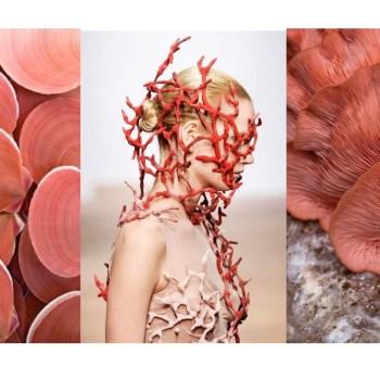 Come abbinare il color corallo