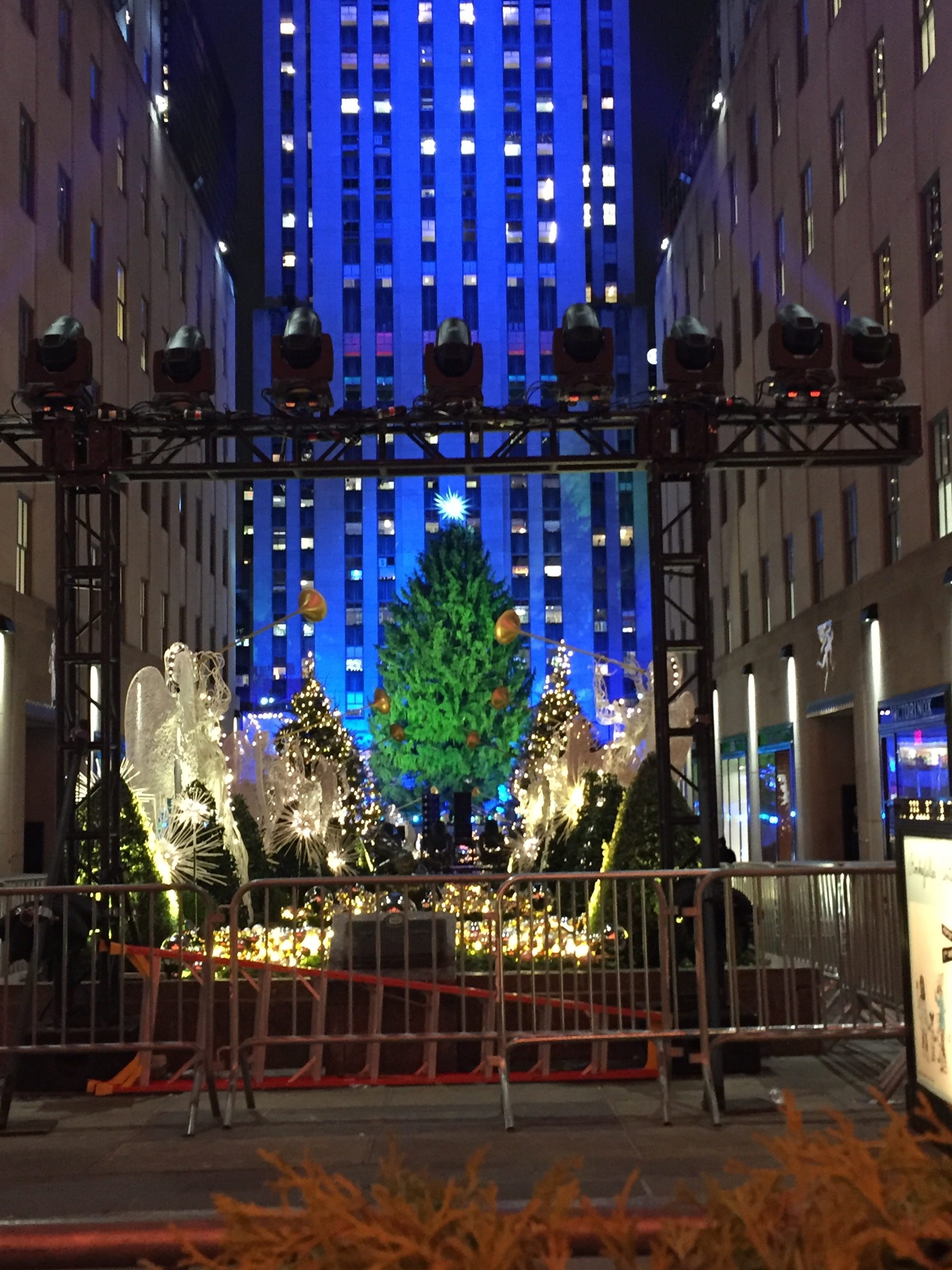 Must See's During Christmas in NYC