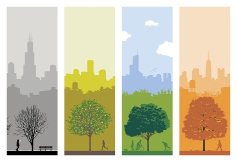 Chicago Seasons by Ryan Kapp