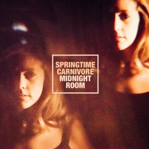 springtimecarnivore-midnightroom