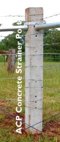 ACP Concrete Strainer Post
