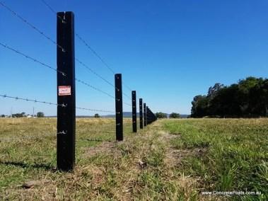 ACP Black Painted Posts - Woodburn
