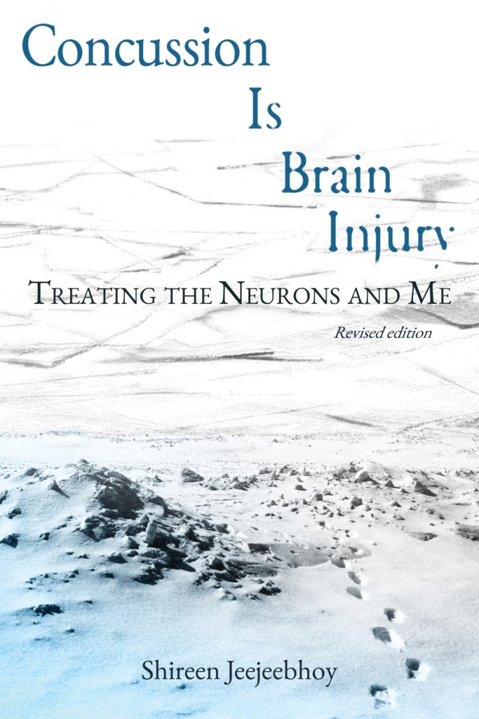 Concussion Is Brain Injury by Shireen Jeejeebhoy front cover showing title over a winterscape of ice over tracks in the snow. White gradating to blue, top to bottom.