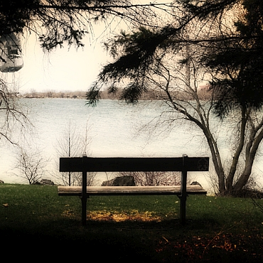 Bench facing the water underneath trees overhanging on either side. Dark edges.
