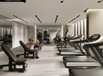 rendering-s2-at-stonebrook-8-fitness