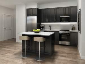 Rendering of Nuvo 2 suite kitchen dark