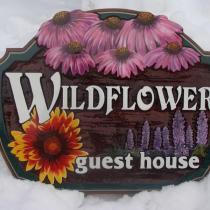 wildflower-main