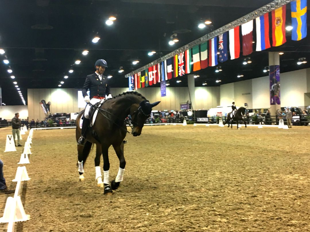 Powerful Beauty - Omaha World Cup Dressage Finals