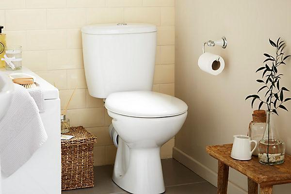 leaking toilet flapper waste