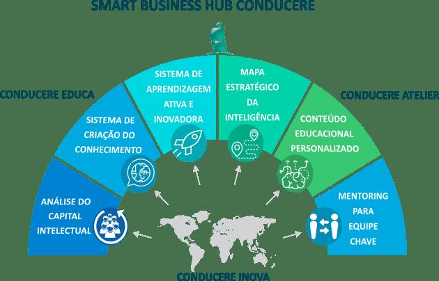 Smart Business HUB da Conducere