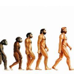 a inteligência artificial é a evolução do humano?