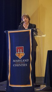 Hilary Ruley, Chief Solicitor, General Counsel Division, Baltimore City