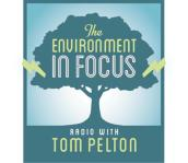 environment-in-focus
