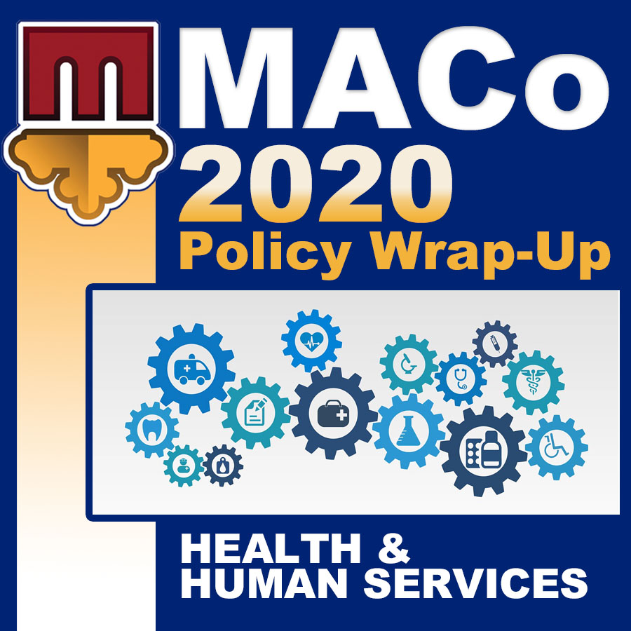 2020 End of Session Wrap-Up: Health and Human Services