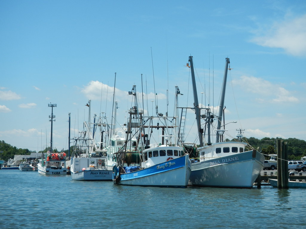 CARES Funding Available for MD Fishing Industry
