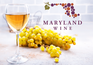Washington County Wines Win Big at 2019 Comptroller's Cup Competition