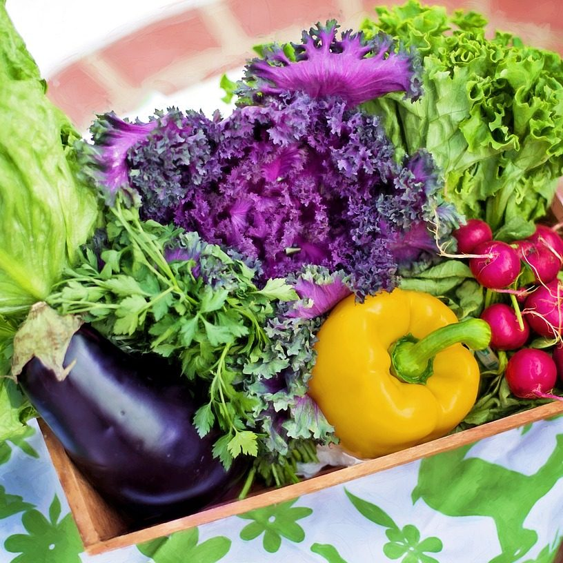 Governor Hogan Designates August 1-7 Maryland Farmers' Market Week