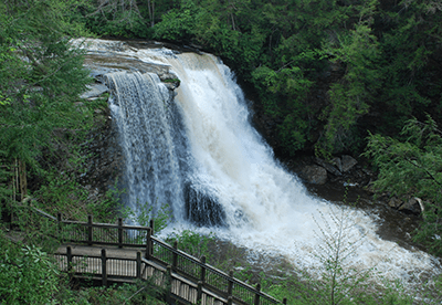 Fun Fact: Go Chasing Waterfalls in These Counties
