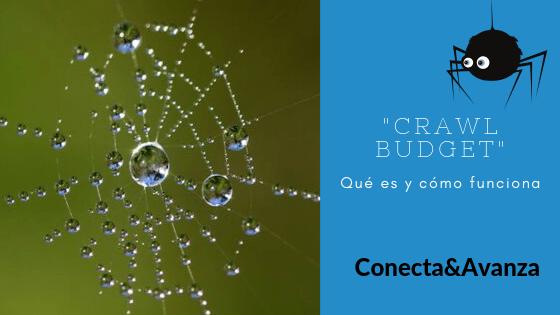 crawl budget - conecta y avanza