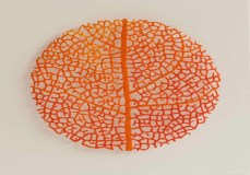 Meredith Woolnough4