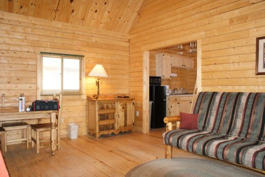 Log Cabin living space