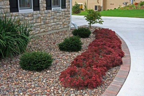 july special-decorative stone 10
