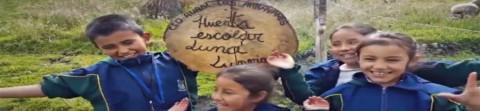 Implementando las TIC en la Huerta Luna Lunera