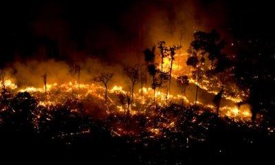 Checamos! Para criticar suposto descaso com a Amazônia, celebridades e líderes políticos publicam imagens antigas 5