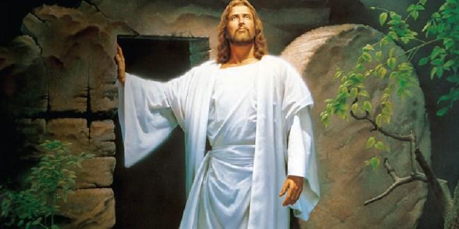 Miramos a Cristo