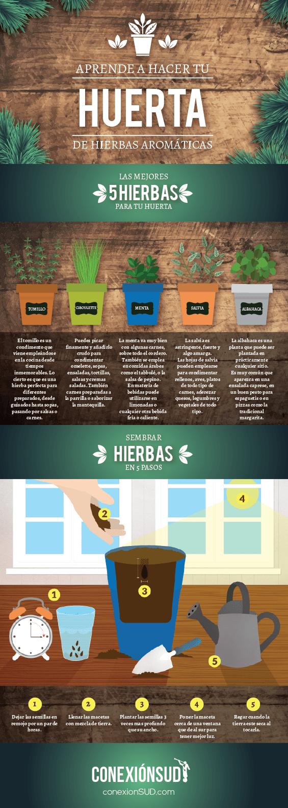 hacer una huerta de hierbas aromaticas - conexionsud