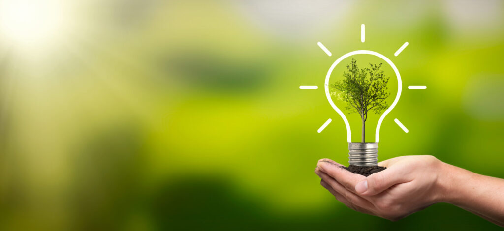 Hand holding a lightbulb with tree in the middle on a green background. Image to support sustainable event ideas.
