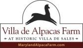 Villa_De_Alpacas-logo_concepts