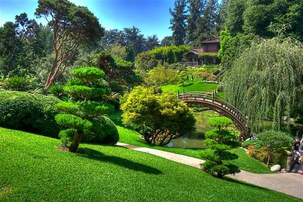 love of japanese gardens confero