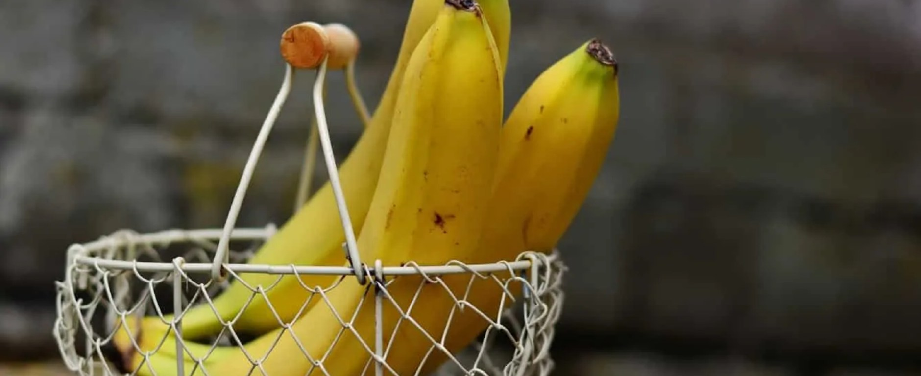 Three bananas in metal basket