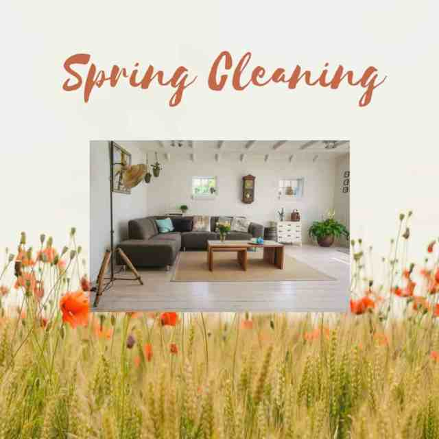 Spring Cleaning living room