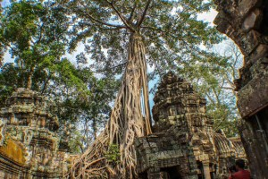 Tha Prom Angkor Wat Highlights of Cambodia