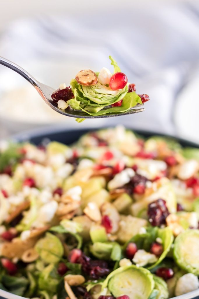 This shaved brussel sprout salad with cranberries, apples, and pomegranates is delightfully refreshing and tastes delicious! Wow your guests with this simple brussel sprout salad recipe with homemade honey mustard dressing.