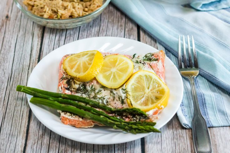 horizontal final shote of instant pot salmon