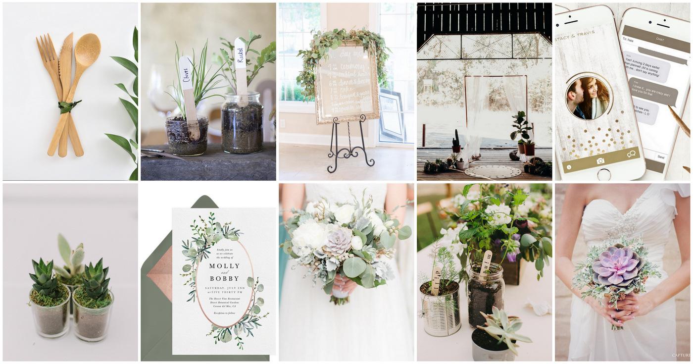 50+ Elegant Eco-Friendly, Zero Waste + Sustainable Wedding