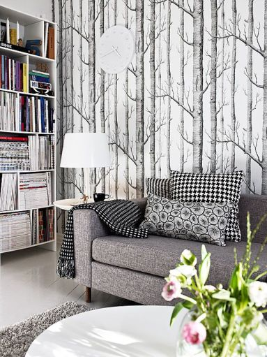 Birch Tree Wallpaper form Cole and Sons