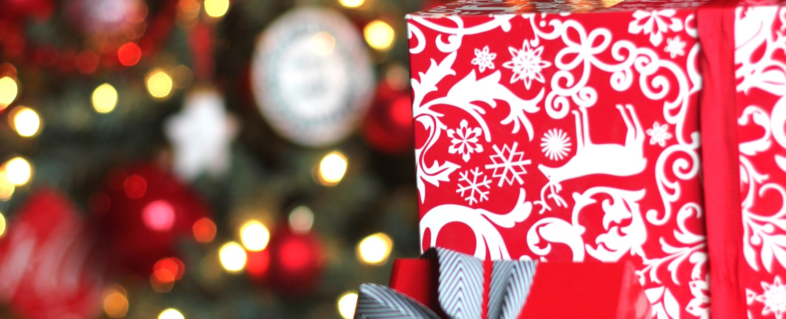 Holiday Gift Wrapping Workshop with Steve McKenzie's
