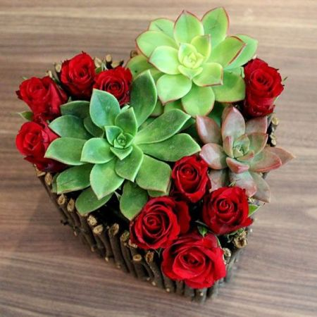 Succulents and Roses