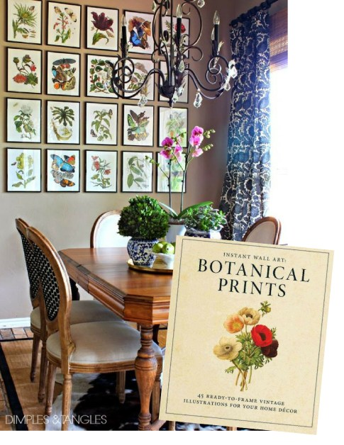 Product + Inspiration:  Frame-able Botanical Art
