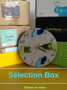 sélection box chien et chat