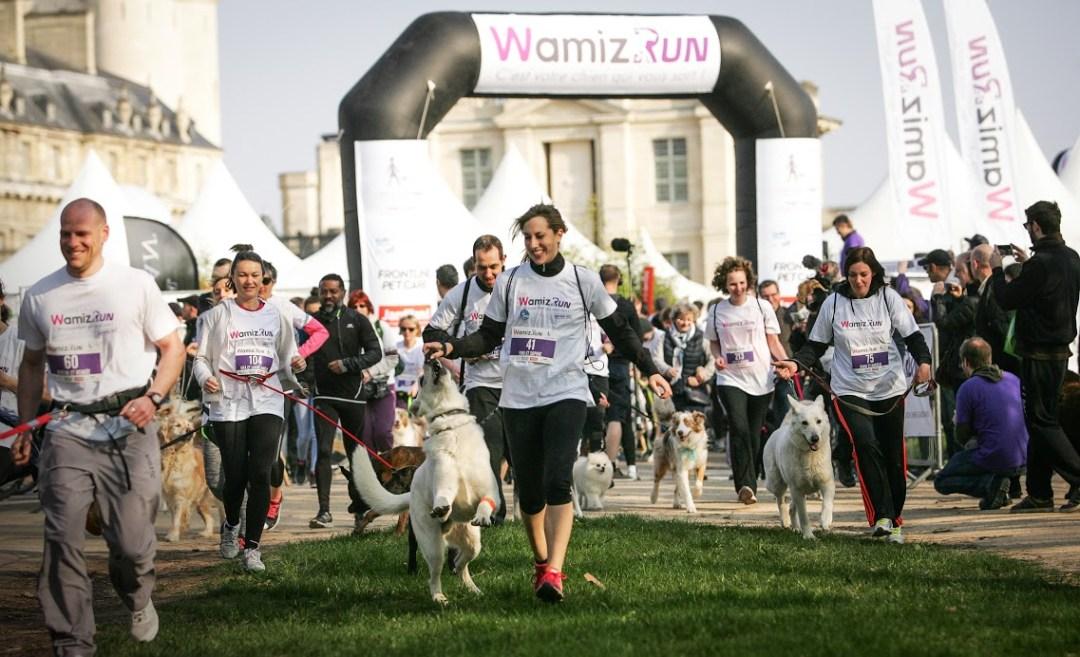 Wamiz Run : l'évènement pet friendly à ne pas manquer. 2 courses au choix : cani cross et cani marche. Découvrez le programme et les différentes activités